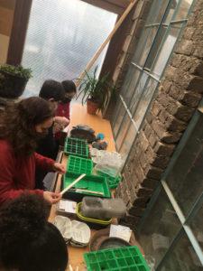 Jardinage atelier semis